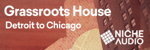 Grass Roots House - Detroit To Chicago